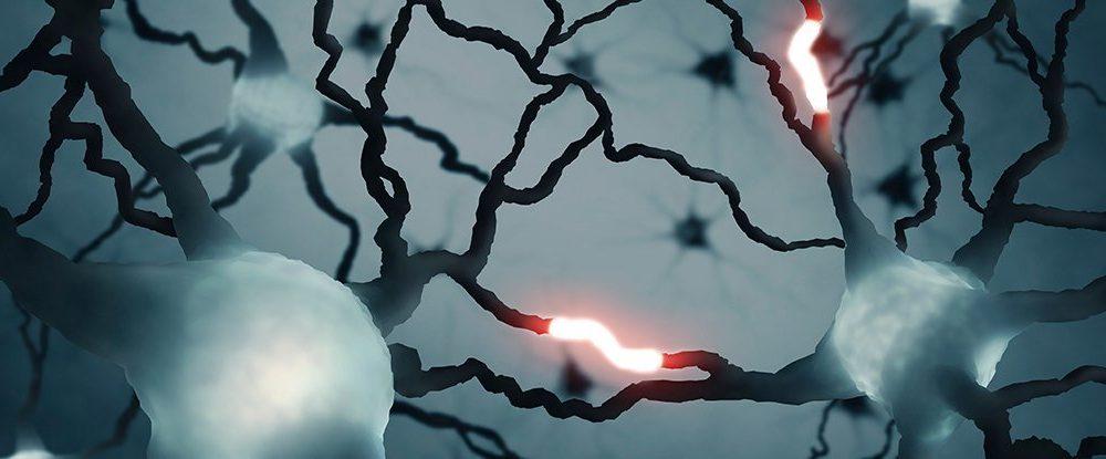 beyin sinyali keşfedildi